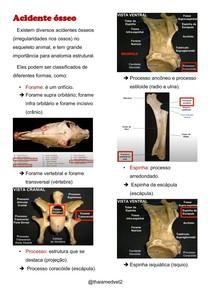 Acidente ósseo