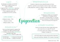 Epigenética [mapa mental]