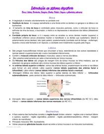 Introdução ao sistema digestório - Anatomia da Boca, Lábios, Gengiva, Dentes, Palato, Língua e glândulas salivares