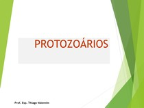 Aula _Apresentacao_Protozoarios