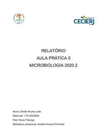 Relatório 5 - Drielle Rocha Leite - Microbiologia 2020 2