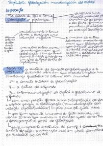 RESUMO Rolando Astarita - Valor mundial y globalización (capítulo 8, 9 e 10)