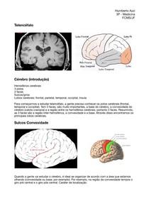 Aula 11 - Neuro