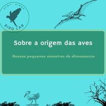 Origem evolutiva das aves - Anatomia e fisiologia