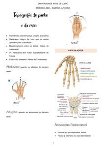 topografia da mão
