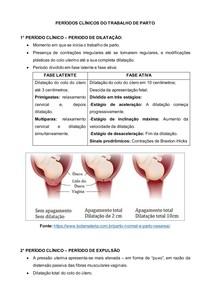 PERÍODOS CLÍNICOS DO PARTO