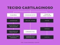 Tecido Cartigalinoso (mapa mental)