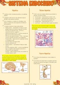 Sistema Endocrino part 2 - Fisiologia
