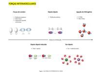 Resumo - Forças Intermoleculares