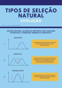 EVOLUÇÃO: TIPOS DE SELEÇÃO NATURAL