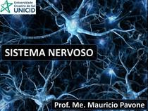 Aula - 31 05 21 - Sistema Nervoso