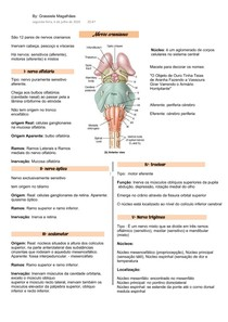 nervos cranianaos