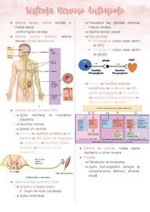 Sistema Nervoso Autônomo - Neurofisiologia II/II
