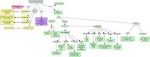 Mapa_conceitual_carcinogênese