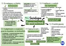 Mapa mental da quinta aula de Sociologia Organizacional