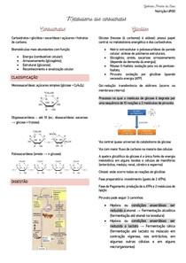 Bioquímica - Metabolismo de carboidratos