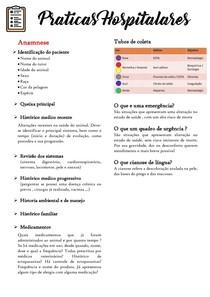 Praticas Hospitalares-resumo