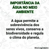 Importância da água no meio ambiente
