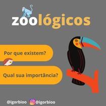 Importância dos Zoológicos