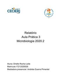 Relatório 3 - Drielle Rocha Leite - Microbiologia 2020 2 (1)