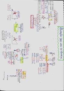 Aplicações das Leis de Newton - Mapa mental
