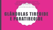Endócrino - Glândulas tireoide e paratireoide
