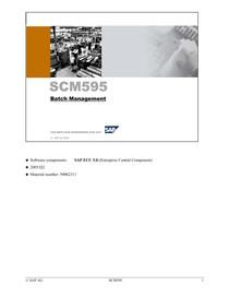 SCM595 Batch Management