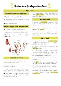 Anatomia e fisiologia digestiva das aves