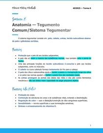 Anatomia Tegumento Comum Sistema Tegumentar