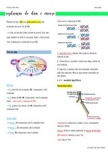 REPLICAÇÃO DO DNA E MEIOSE