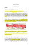 Resumo Bioquímica do Sangue
