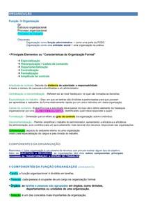 RESUMO ADMINISTRAÇÃO - Organização