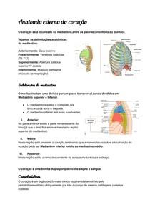 Anatomia externa do coração