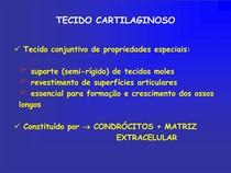 Aula 5 - Tecido cartilaginoso