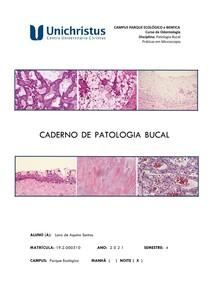 Caderno de Estudo de Patologia Bucal
