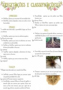 Vegetações e classificações