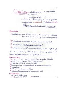 citocinas_resumo