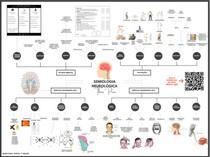 SEMIOLOGIA NEUROLÓGICA - MAPA MENTAL COMPLETO