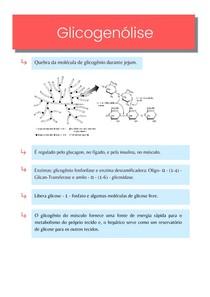 Resumo: Quebra do glicogênio (Glicogenólise) - Bioquímica