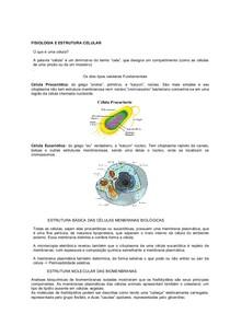 Material De Estrutura E Fisiologia Celular Biologia