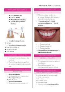 periodonto de proteção