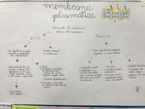Mapa Membrana Plasmática