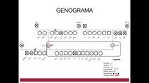 Genograma/Heredograma de Enfermagem - Atenção Básica