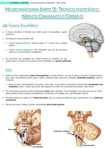 Neuroanato (parte 2) - Tronco encefálico, Nervos Cranianos e Cerebelo