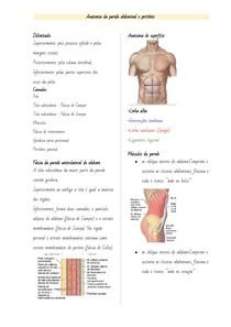 Anatomia da Parede Abdominal e Peritônio