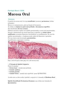 Mucosa Oral + Histopatologia