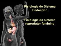 endocrino reprodutor feminino