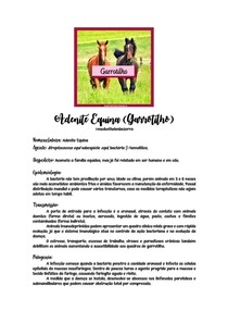 Garrotilho Equinos - @medvethelenbezerra