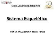 Sistema_Esqueltico_1.pdf
