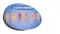 corpo humano imagens